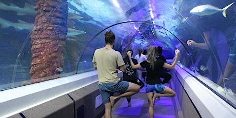 Yoga under the Sea tickets