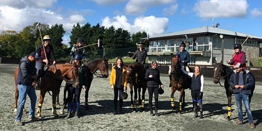 Polo Taster Day