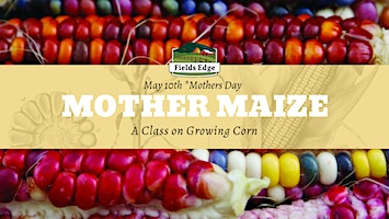 Mother Maize: A class on growing corn