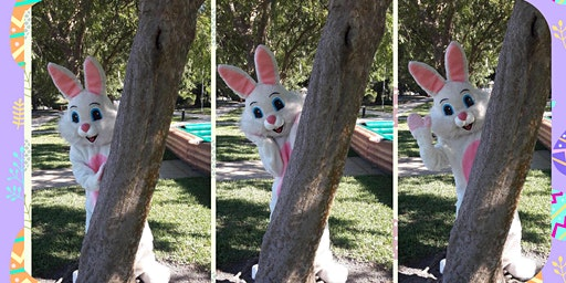 Easter Bunny's Egg Hunt and Party