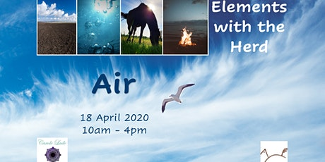 Elements with the Herd - Air tickets