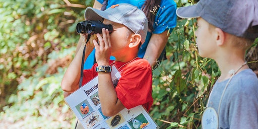 Animals' Homes and Habitats Summer Day Camp