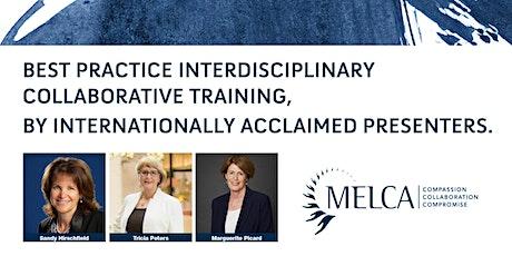 Interdisciplinary Collaborative Training tickets