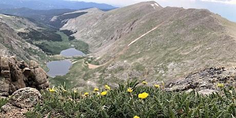 Alpine Wildflower Field Trip tickets