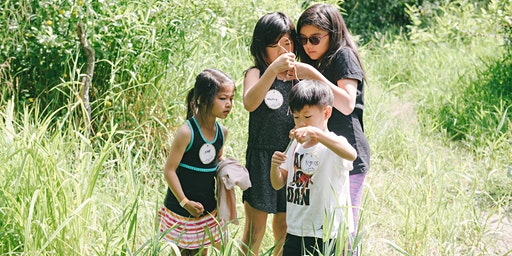 Animals' Homes and Habitats Day Camp Lite