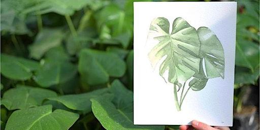Tonkadale Botanical Watercolor Class- Monstera leaf