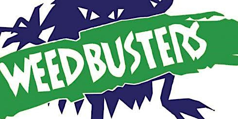 Weed Busters - Busting Weeds, Biosecurity and Bushcare!