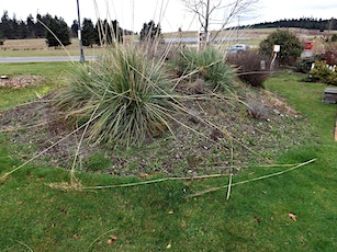 """SWS Speaker Series: """"Landscaping Over Your Drainfield"""" by Scott Chase tickets"""