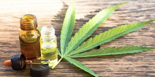 Get Your Maryland Medical Cannabis Card- February Workshop