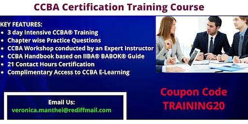 CCBA Certification Training in Sudbury, ON