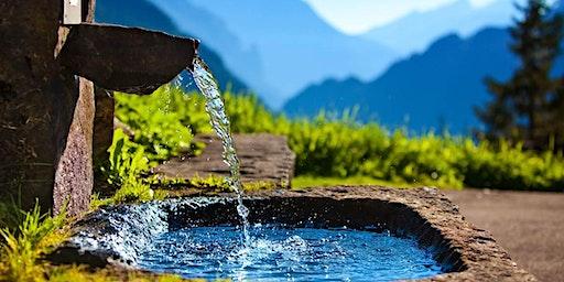 L'eau dynamisée, ses secrets et ses découvertes, par Christophe Carrette