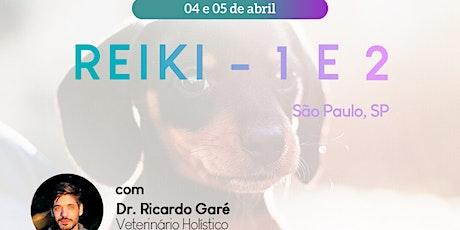 Reiki Nível 1 São Paulo - 04 de abril ingressos
