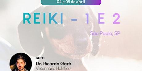 Online - Reiki Nível 1 e 2 - 04 e 05 de abril ingressos