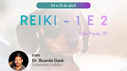 Online Reiki Nível 2 São Paulo - 05 de abril ingressos