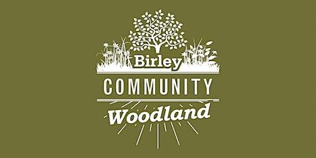 Woodland Workshop - Wildflower Planting tickets