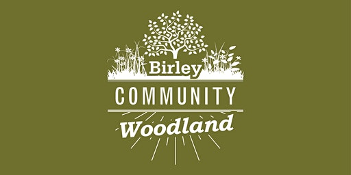 Woodland Workshop - Wildflower Planting