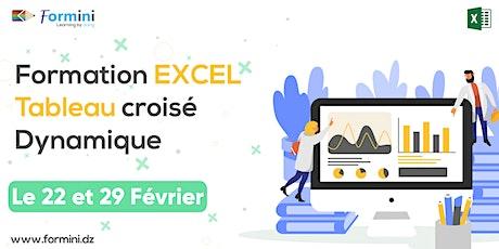 Formation EXCEL: Tableaux Croisés Dynamiques - Février 2020  billets