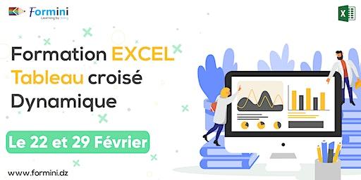 Formation EXCEL: Tableaux Croisés Dynamiques - Février 2020