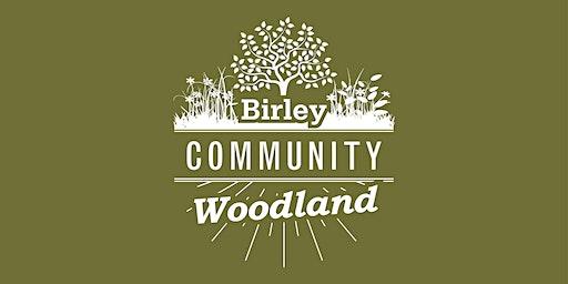 Woodland Workshop - Plant Survey and Forage