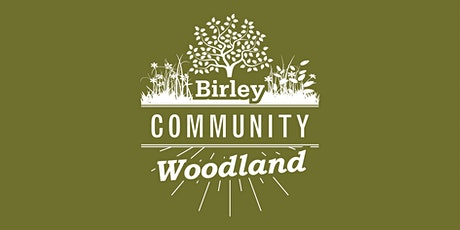 Midsummer Woodland Workshop - Orchard maintenance tickets