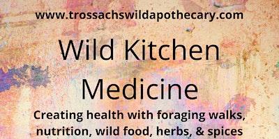 Wild Kitchen Medicine - Energy