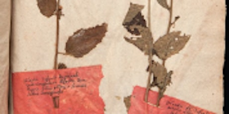 The Legality of Euro-American Botanical Exploration in 19th-Century China tickets