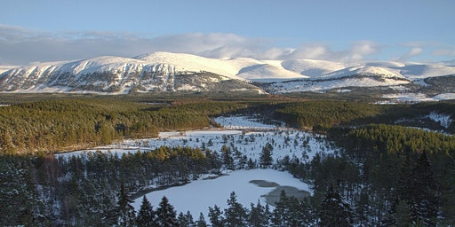 Boat Talks: Cairngorms Connect: Restoring Landscapes for the Future