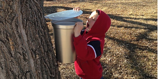 Maple Sugaring Day