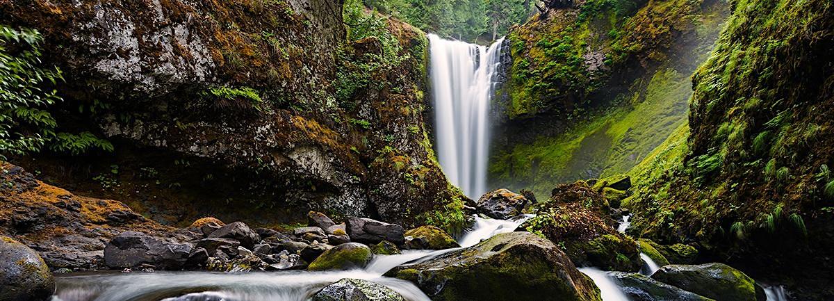 Falls Creek Falls Dog-Friendly Hike, WA