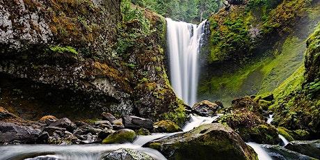 CANCELED: Falls Creek Falls Dog-Friendly Hike, WA tickets