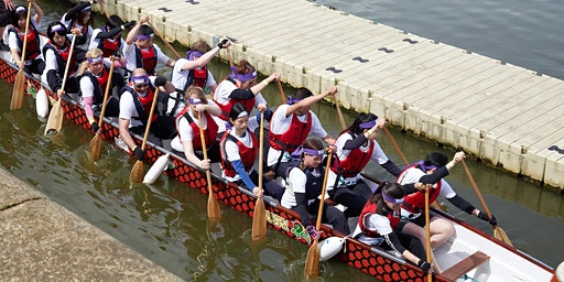 Dragon Boat Paddling