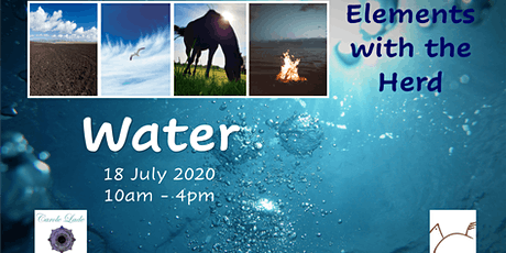 Elements with the Herd - Water tickets
