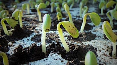Seed Starting Workshop tickets