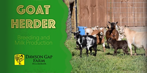 Goat Herder - Advanced Topics for Breeding and Milking Dairy Goats