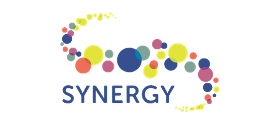 Synergy Mentors Training and Connections
