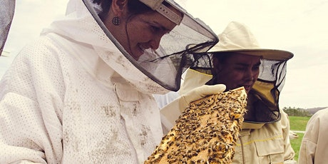 Beginning Beekeeping Course 2020 tickets