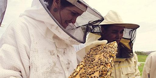 Beginning Beekeeping Course 2020