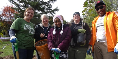 Create a Park Tree Care Team