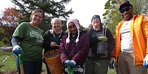 Create a Park Tree Care Team