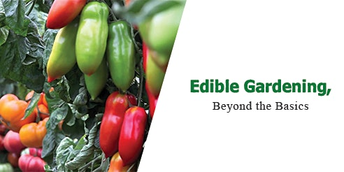 Edible Gardening, Beyond the basics