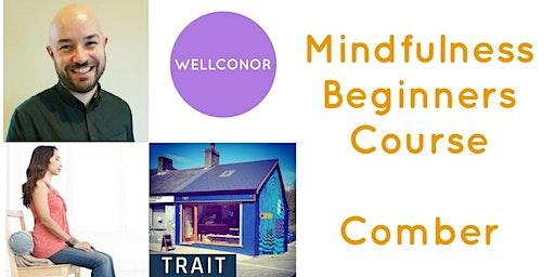 Mindfulness - Level 1 - Beginners