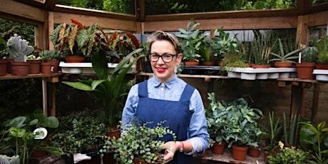 Make a succulent arrangement tickets