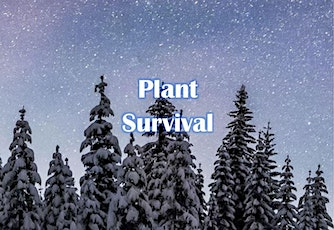 Snowshoes Under the Stars: Plant Survival - 3223 tickets