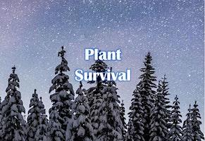Snowshoes Under the Stars: Plant Survival - 3223