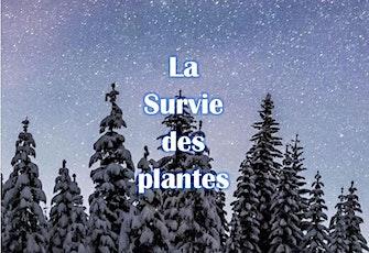 Raquettes sous les étoiles: La Survie des plantes - 3223 billets