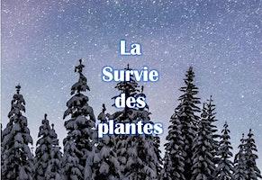 Raquettes sous les étoiles: La Survie des plantes - 3223