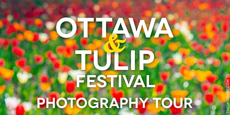 Ottawa and Tulip Festival Photography Tour tickets