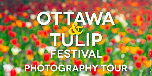 Ottawa and Tulip Festival Photography Tour