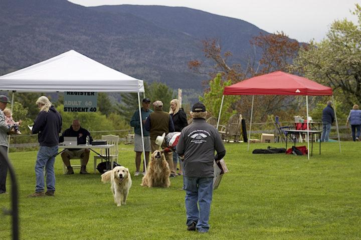 The Bancroft House 2nd Annual Cornhole Tournament! image