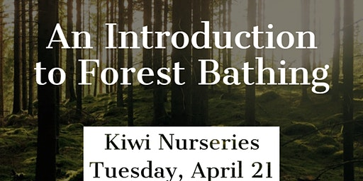 Forest Bathing Introduction